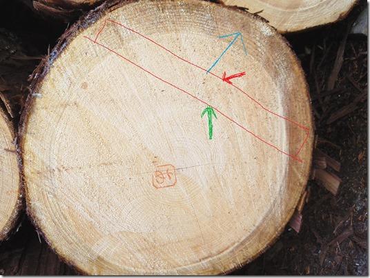 桧丸太木表