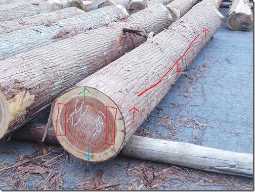 原木木表木裏杉