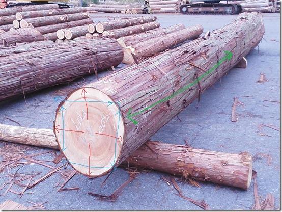 木材3方向